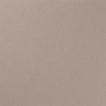 Ralph Lauren 13 in. x 19 in. #RR128 Dry Bed River Rock Specialty Paint Chip Sample - RR128C